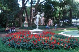 jardinbotanico
